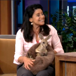 Tonight Show with Jay Leno SeaWorld's Julie Scardina brings a baby kangaroo that jumps into its mom's pouch.