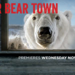 'Polar Bear Town' preview